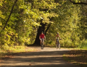 Two people biking in a wooded trail.